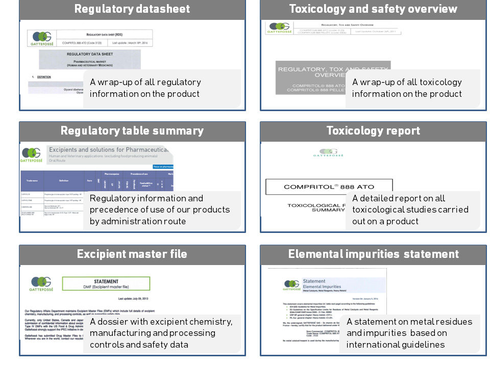 Gattefosse regulatory documentation wrap up