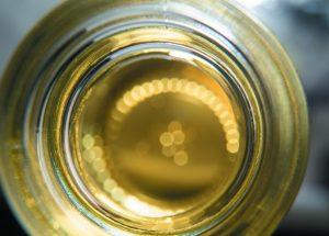 Gattefosse oil